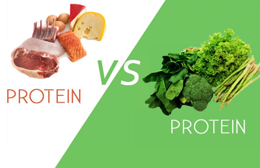 vad menas med fullvärdigt protein