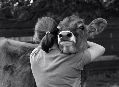 Vad innebär veganism?